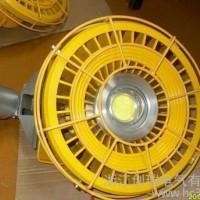 免维护节能防爆吸顶灯 吸顶式20WLED防爆灯  多种安装方